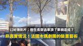 【影片】樹木穿過汽車生長?不是車禍!法國木偶劇團裝置藝術