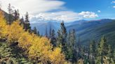 Scenic fall drives in Colorado: Where to see changing leaves from the comfort of your car