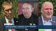 3 candidates face off in GOP primary for open West Michigan Senate seat