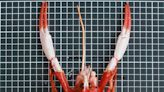 東沙捕獲金絲猴蝦 登錄臺灣新紀錄種「海神後海螫蝦」
