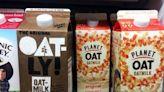 Greta Thunberg attacks EU plan to ban 'dairy'-terms from plant-based alternatives