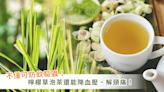 夏季室內擺「檸檬草」不只驅蚊!研究:作為茶飲有助降低血壓、緩解頭痛