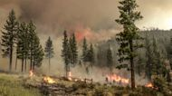 Fast-Growing Tamarack Fire in Sierra Nevada Threatens Town of Markleeville