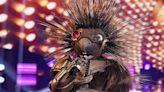 'The Masked Singer' Finally Revealed Robopine Last Night!
