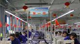 根絕新疆「血棉花」 日本將要求紡織業制定方針