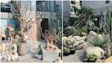 台中最新仙人掌秘境「酉 succulent & artwork」沙漠造景、清水模、玻璃溫室,彷彿走入城市中的夢幻綠洲