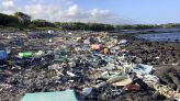 EPA forces Hawaii to clean up two beaches contaminated by trash