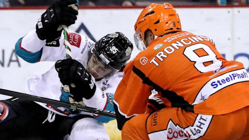 Elite League: Belfast Giants lose 4-0 at home to Sheffield Steelers