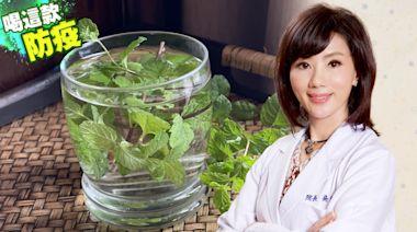 防疫飲|薄荷、紫蘇抑制病毒活性 吳明珠親調養肺茶補氣清熱 | 蘋果新聞網 | 蘋果日報