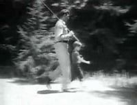 The Andy Griffith Show - Wikipedia
