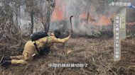 山林火災衝擊生態 環境難永續發展