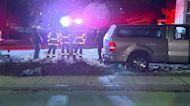 Pick-up truck hits Waltham traffic light, crashes into tree