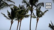 2020 to be Hit with Above Average Hurricane Season