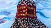 The mysterious masked women of Iran
