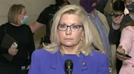 """Liz Cheney speaks after ouster from House GOP leadership: """"I will do everything I can"""" to prevent Trump's reelection"""
