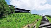 鹿篙咖啡莊園~南投台灣咖啡莊園 (隱藏版景點) / 景觀餐廳 - SayDigi | 點子生活
