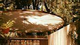 Marin Art and Garden Center Highlights Cool California Landscape Designers   Pacific Sun