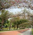 榮星花園公園