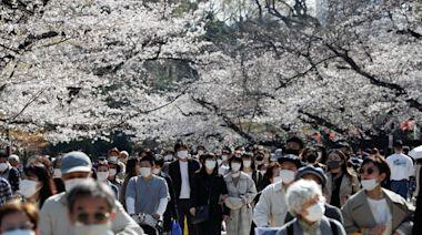 日本超過90%都是「高傳染性」變種病毒株!重症風險1.4倍