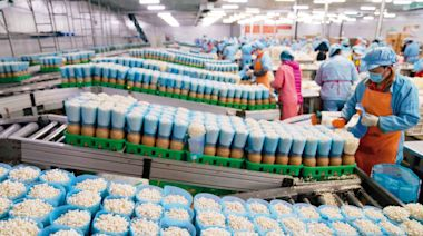 河北省臨西縣食用菌產銷模式創新 年產量超過10萬噸