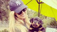 Christina Haack Reveals She 'Re-Homed' Her Dog Biggie 'Due To Behavioral Issues'