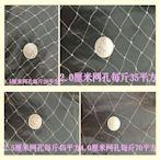 防鳥網 尼龍網葡萄稻谷魚塘養殖透明防護網魚線材質