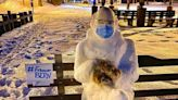 Snowman Bernie chills in Northport