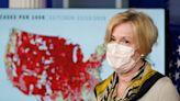 Birx travels, family visits highlight pandemic safety perils