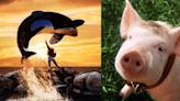 10 Best Movies Where The Protagonist Is A Live-Action Animal, Ranked By To IMDb