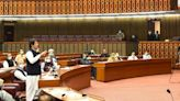 Pakistan PM: US 'Martyred' bin Laden