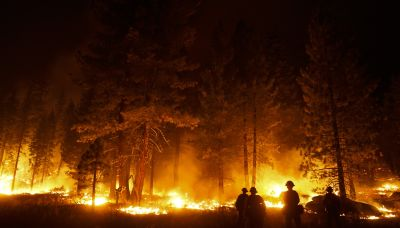 Report: 2020 is deadliest year for `environmental defenders'