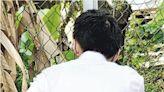 【Emily】區議員王偉麟last day 救狗被咬屁股