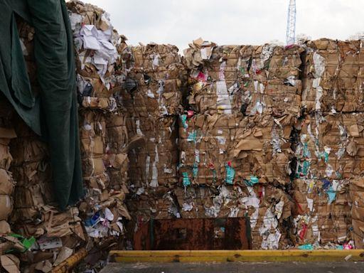 消委會│可持續消費指數稍升 「回收行為」5年來維持顯示知而不做