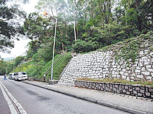 大嶼山「自駕遊」配額 擬明年次季增至50個