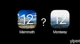 Apple 註冊商標暗示 macOS 12 將命名為「Mammoth」 或「Monterey」