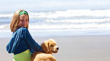 別埋沒天分!你家的狗可能是游泳健將
