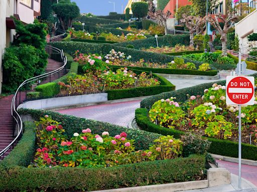 The curious case of Lombard Street, San Francisco's overcrowded oddity
