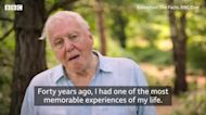 What fuels hope for Attenborough