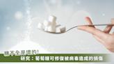 糖是身體的修復開關!研究:吃對糖能修復病毒造成的損傷
