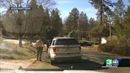 Video shows what led up to fatal shooting of woman by Nevada County deputy