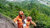4歲小女童走失!尋獲時「坐在20m高懸崖」 網驚喊:她是怎麼到的?