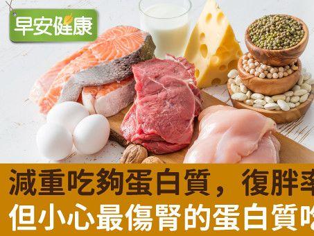 想瘦卻吃不夠蛋白質,流失肌肉易復胖!醫師實例講解補充密技