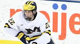 Ted Kulfan's 2021 NHL mock draft 1.0: Will Wings mine Sweden or Ann Arbor for future star?