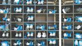 疫情考驗越南製造 - C9 全球財經周報/東南亞 - 20211024 - 工商時報