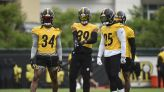 From the Notepad: Getting a Feel for the Steelers Defense