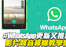 WhatsApp更新又推新功能 影片聲音移除教學懶人包