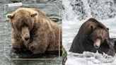胖是為了走更長遠的路!美國國家公園舉辦「胖熊週」投票,熊王四度奪冠公布驚人對比! | 寵物圈圈 | 妞新聞 niusnews