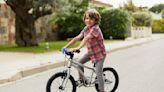 推薦十大兒童腳踏車人氣排行榜【2021年最新版】