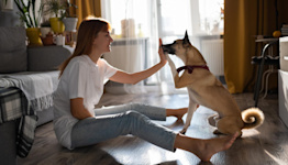 How Pet Parents Can Financially Prepare For a Return to Office