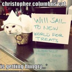 chris columbus cat lol